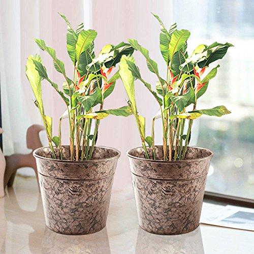 Vaso piante e fioriere contenitore giardinaggio doppio strato stagno color oro rosa diametro 25cm 2 pezzi flower pot