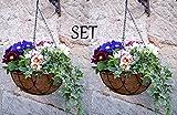 2er Blumenampel Set Lilienburg Korb HOME (30x30cm) Deko für Außen - Blumen-Ampel