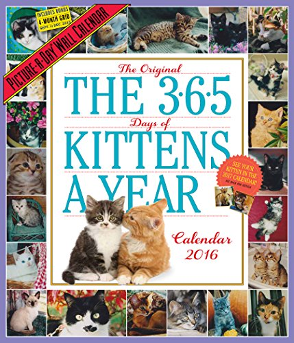 The 365 Kittens-A-Year Picture-A-Day Wall Calendar (2016 Calendar)