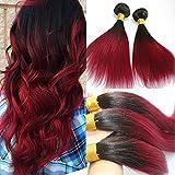 100gram dritto 100% capelli umani Borgogna ombre Hair extensions color # 1B nero naturale al vino rosso Bundles Hair Weft