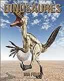 Dinosaures: Le livre des Informations Amusantes pour Enfant & Incroyables Photos d'Animaux Sauvages – Le Merveilleux Livre des Dinosaures pour enfants âgés de 3 à 7 ans