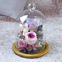 lkklily-creative regalo de San Valentín Día eterna flor nunca Withered la Micro paisaje para mantener las flores cálido