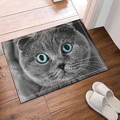 GzHQ Tiere Dekor süße graue Katze mit blauen Augen Bad Teppiche rutschfeste Fußmatte Boden Eingänge Outdoor Indoor Haustür Matte Kinder Badematte 15.7x23.6in Badezimmerzubehör