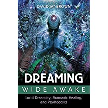 Dreaming Wide Awake: Lucid Dreaming, Shamanic Healing, and Psychedelics (English Edition)