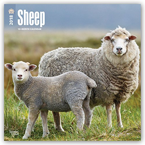 Descargar Libro Sheep - Schafe 2018 - 18-Monatskalender: Original BrownTrout-Kalender de Browntrout
