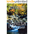 Rocks in the Stream (English Edition)