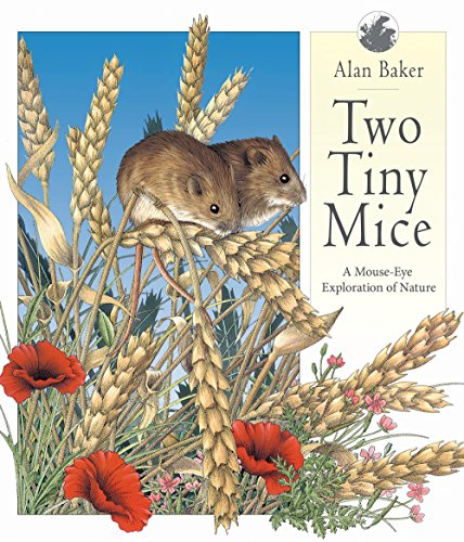 Two Tiny Mice: A Mouse-Eye Exploration of Nature