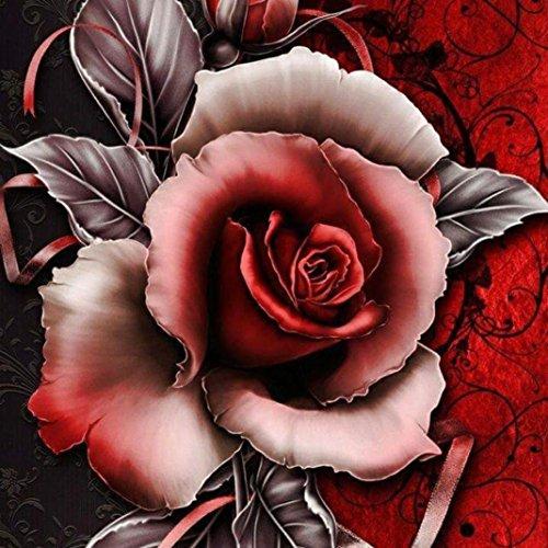 Riou DIY 5D Diamant Painting,Stickerei Malerei Crystal Strass Stickerei Bilder Kunst Handwerk für Home Wand Decor gemälde Kreuzstich Rose (Mehrfarbig A, 30x30cm) -