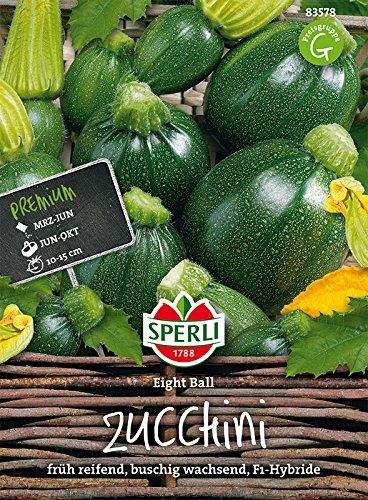 Zucchini Belastbarkeit