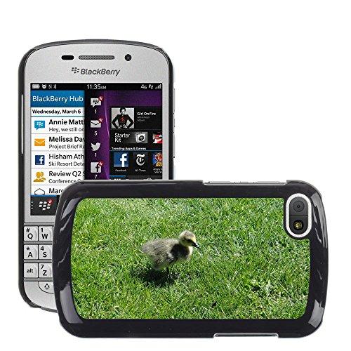 Nur Handy HOT Style Handy PC Hard Case Cover//m00139083Gosling Ente Küken Vogel Baby Young//BlackBerry Q10