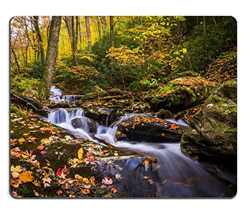 Jun XT Gaming Mousepad Bild-ID: 33786596 Herbst Farbe und Kaskaden auf Stoney Gabel near the Blue Ridge Parkway North Carolina -
