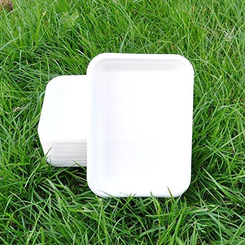 Zuckerrohr Rechteckiger Teller 18,5x 13,5cm biopack Natürliche Alternative für Kunststoff,, weiß, 18.5x13.5 (Rechteckige Natürlichen)