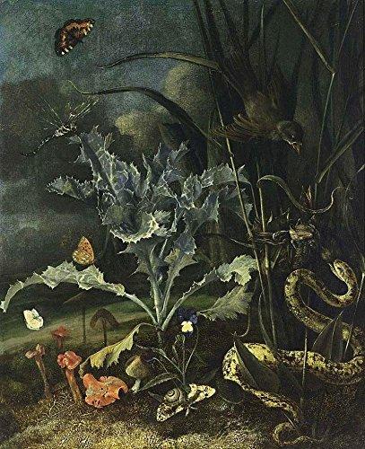 Antike Vogel-prints (Das Museum Outlet-Stillleben mit Disteln, Schlange und Vögel-1666-Poster Print Online (A3Poster))