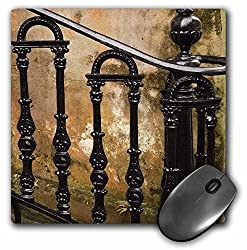 3dRose mp_89374_1 8 x 8-Inch Georgia, Savannah. Wrought Iron Railing - Us11 Jwl0189 - Joanne Wells Mouse Pad