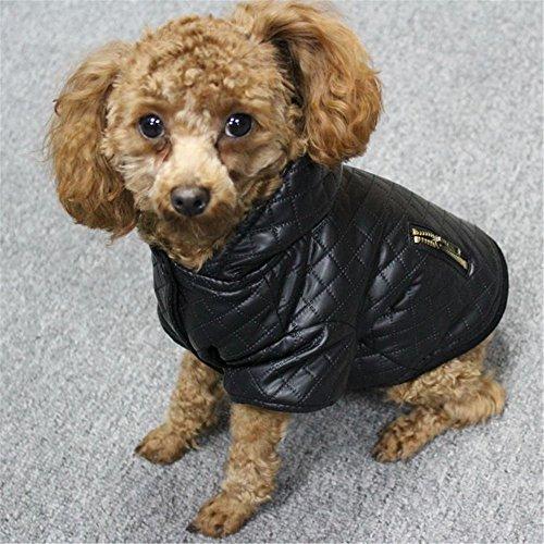 UMALL Hundemantel Winter Kleine Hunde (Weibchen/Männchen) Hunde Wintermantel mit Kapuze Hundejacke Hoodie Wasserdicht (S-Rückenlänge 25cm, (Anzug Rosa Männchen)