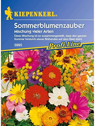 Sommerblumen-Zauber Mischung vieler Arten