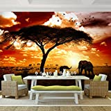 Fototapete African sunset 308 x 220 cm - Vliestapete - Wandtapete - Vlies Phototapete - Wand - Wandbilder XXL - !!! 100% MADE IN GERMANY !!! Runa Tapete 9110010a