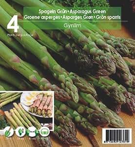 Grow &Eat Spargel, 4 Stück