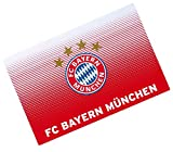 FC Bayern München Schreibunterlage / Schreibtischauflage / Unterlage FCB