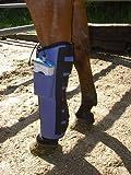 Vorderbein Gamasche, Vitrotron pulsierendes Magnetfeldtherapie System für Pferde, Direkt vom Hersteller, Qualität Made in Germany