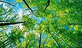 LWCX 3D-Decke Badezimmer Tapeten Benutzerdefinierte Wandbild Tapeten Blauen Himmel Und Grüne Bäume 3D-Decke Wallpaper 3D Fototapete 200X140CM