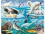 Larsen Tiere der Arktis