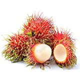 #10: Azalea Garden Rare Red Rambutan Fruit Seeds - 5 Fresh Seeds for Growing