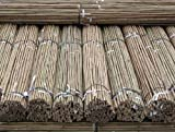 61ukAyOF EL. SL160  - BEST BUY# Marko Gardening Heavy Duty 7FT Bamboo Canes Quality Plant Support Strong & Thick 2m (50) Reviews