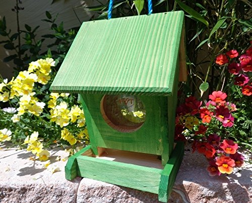 bel-mangeoire-premium-x-vofu1k-gras001-xxl-nichoir-mangeoire-vert-marien-coleoptere-pure-green-jardi