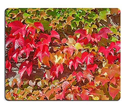 MSD Natural Rubber Mousepad IMAGE ID: 31212016 Autumnal leafs ivy on the wall