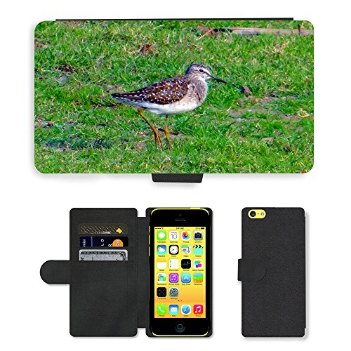 Just Mobile pour Hot Style Téléphone portable étui portefeuille en cuir PU avec fente pour carte//m00140283bois oiseau Sandpiper Bécasseau//Apple iPhone 5C