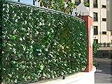 Catral 43020012 Seto Artificial Hedra, Verde, 300 x 3 x 100 cm