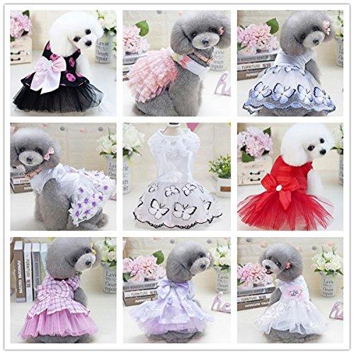 rinzessin Kleid Dünnschnitt Sommerkleidung Katze Kostüm Rock von Teddy Hund Bichon Welpen Pudel Pommern, 001, M (Bichons Kostüm)
