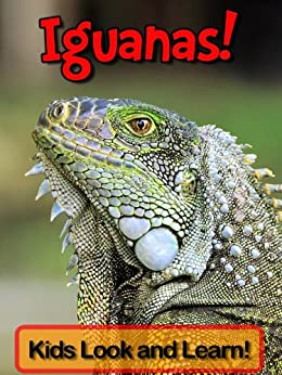 Iguanas! Learn About Iguanas and Enjoy Colorful Pictures - Look and Learn! (50+ Photos of Iguanas) (English Edition) de [Wolff, Becky]