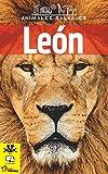 León: Libro infantil con imágenes y datos asombrosos sobre el León, un animal majestuoso y fascinante. (Animales Salvajes nº 1)