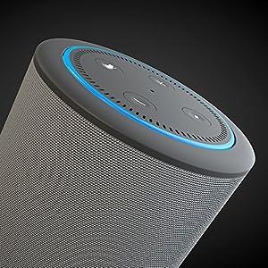 VAUX Cordless Home Speaker + Portable Battery for Amazon Echo Dot Gen 2 Gray/Ash (WHITE)