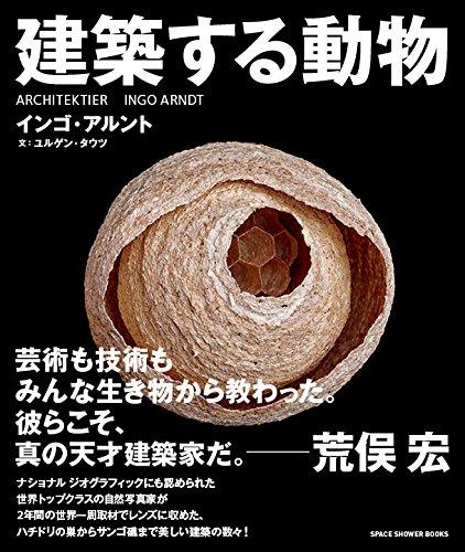 Kenchikusuru dobutsu
