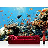 Vlies Fototapete 152.5x104cm PREMIUM PLUS Wand Foto Tapete Wand Bild Vliestapete - Tiere Tapete Unterwasser Aquarium Fische Korallen Meer blau - no. 1922