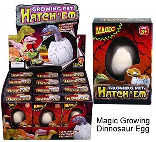 Dinosaurier aus dem Schlüpfei - magic growing egg - Dino Ei (Dinos Spielzeug)