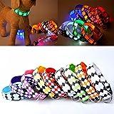 style_dress Haustier-Leine für Hunde/LED-Licht, mit Diamanten-Muster mit Schnalle