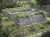 HOCHBEET Steinkorb-Gabione eckig, Maschenweite 5 x 10 cm, Länge 200 cm, Wandstärke 10 cm, Spiralverschluss, galvanisch verzinkt (200 x 100 x 100 cm)