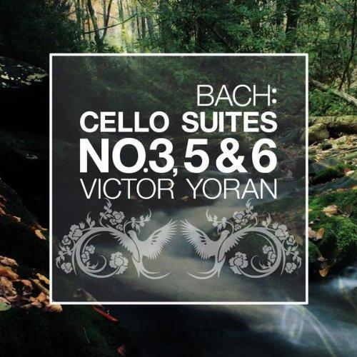 Cello Suite No. 5 in C Minor, BWV 1011: III. Courante