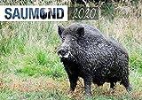 Saumond Wandkalender 2020