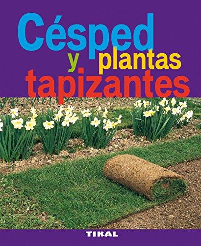 cesped-y-plantas-tapizantes-jardineria-y-plantas-jardineria-y-plantas