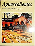 Aguascalientes: Historia y Geografia Tercer Grado by Various (1998-08-02)