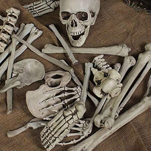 Kind Kostüm Hexe Garde - Eliasan 28 Stücke Halloween Kunststoff Skeleton Schädel Knochen Set Scary Skeleton Körper Modell Spielzeug Prop Dekoration für Haus Bar Home Garden Party Indoor