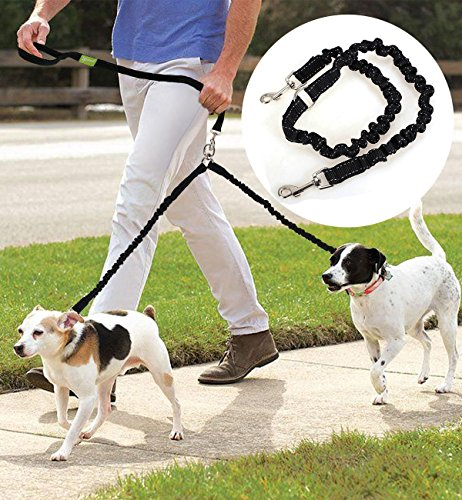 Double Dog Lead Coupler - Best for Large & Medium