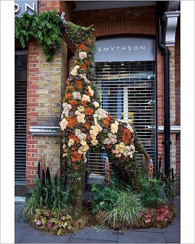 photographic-print-of-smythsons-floral-giraffe-2017