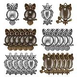 ABREOME 20 Stück Lünette Anhänger Gold & Silber Owl Anhänger Oval Runde Tabletts Zubehör mit 20 Stück Glas Cabochon Klare Kuppel Fliesen für Foto Handwerk Schmuckherstellung (Insgesamt 40 Stück)