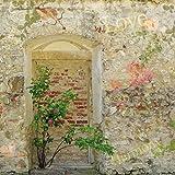 1art1 63830 Mauern - Romantische Garten-Mauer Poster Kunstdruck 70 x 70 cm
